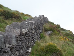 Stone Walls Criss Cross the Country