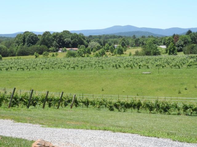 Round Peak Vineyards