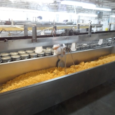 Ashe County Cheese Plant - Cheese Being Made