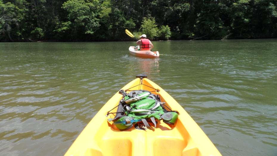 Kayaking the Catawba - Fathers Day Adventure