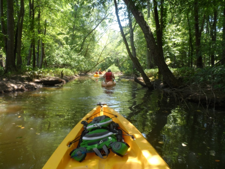 Kayaking the Catawba - Down the Canal