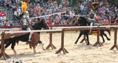 Carolina Renaissance Festival - Jousting