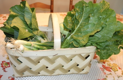 Week One Petite Basket - Red Barn Market - Correll Farms Rowan County NC