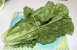 Romaine Lettuce- Red Barn Market - Correll Farms - Rowan County NC