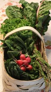 Correll Farms/Red Barn Market - Veggie Basket #2