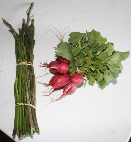 Correll Farms/Red Barn Market - Radishes & Asparagus