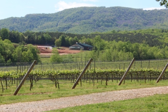 jones von drehle estate wines