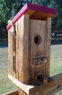Outhouse Birdhouse (529x800)