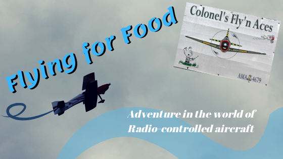 Flying for Food Blog Banner