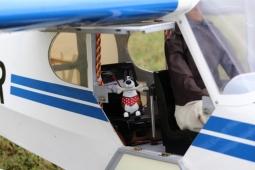 RC Plane Co-pilot