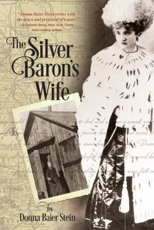 The Silver Baron's Wife Book Cover